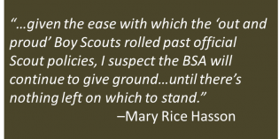 "The Boy Scouts: Newly ""Out and Proud"""